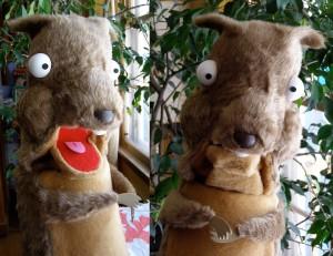 SquirrelyDuo